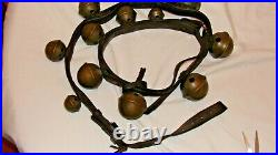 12 antique brass petal sleigh bells on leather strap-all numbered Barn Find