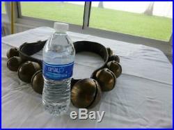 13 Graduated Antique Brass Petal Sleigh Bells on 43 Leather Strap -Bells 1.5-3