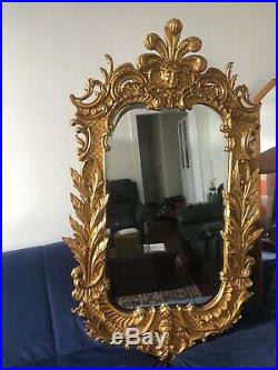 Carvers Guild Carved Gilt Wood French Style Wall Mirror Belle Jardin Model 1046
