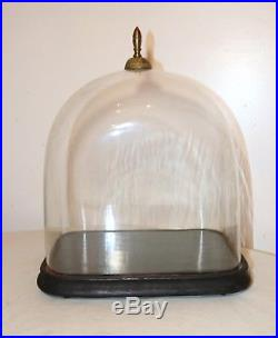 LARGE antique cloche dome glass wood brass display bell jar case stand rareshape